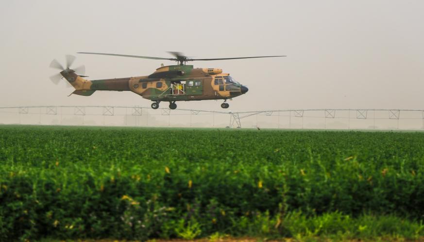 القوات المسلحة تساند وزارة الزراعة في مكافحة الجراد الصحراوي
