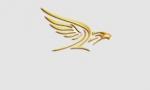 أكاديمية النسر الذهبي للطيران